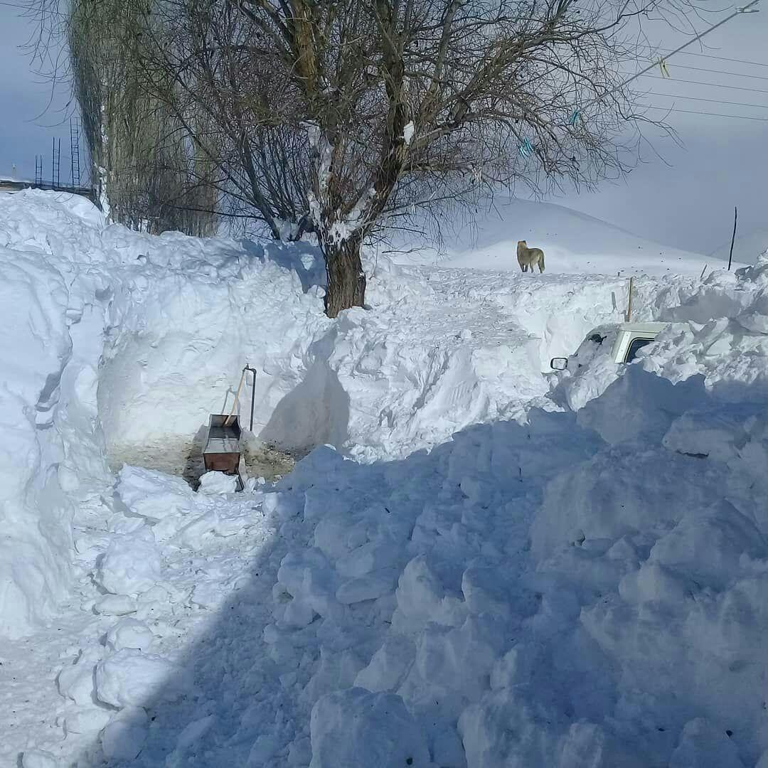 وضعیت شهرستان خلخال بعد از بار … 177779001581659407