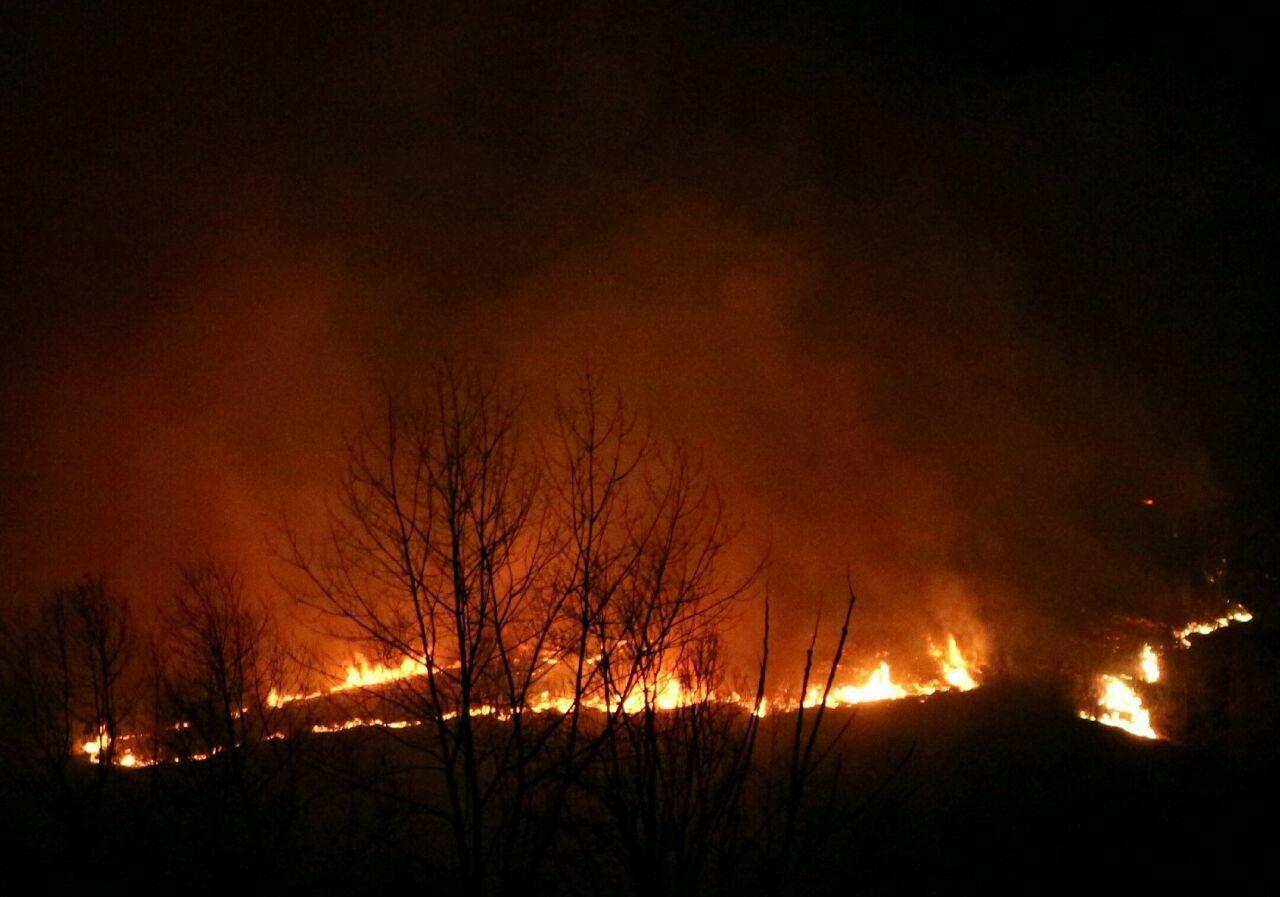 """""""آتشسوزی در جنگلهای پره سر اس … 888362001581028206"""