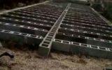 #الو آمادهسازی باغ رضوان رشت … #الو آمادهسازی باغ رضوان رشت … 007023001584348605 160x100