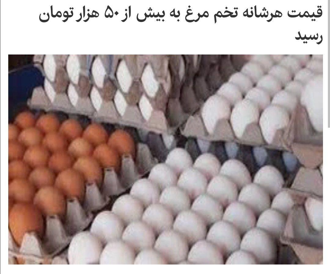 🔻قیمت هر شانه تخم مرغ به بیش … 334424001631464202