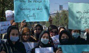 🔻ادامه تظاهرات علیه طالبان در … 🔻ادامه تظاهرات علیه طالبان در … 726615001631194202 300x180