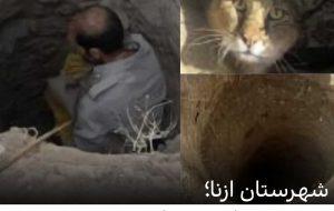 یک گربه جنگلی که در چاه نیمه ع … یک گربه جنگلی که در چاه نیمه ع … 495368001633190404 300x190
